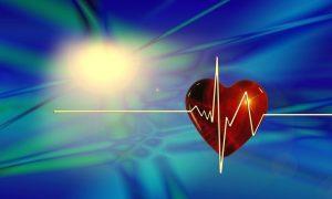 heart-66888_640 (pixabay)
